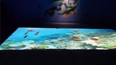 大白鲨数字视觉创意打造海洋馆奇幻世界