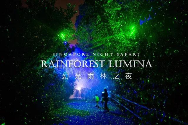 新加坡动物园Lumina 幻光雨林之夜灯光秀