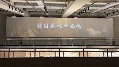"""来虢国博物馆,Sonnoc工程投影机带您近距离体验""""周风虢韵""""!"""