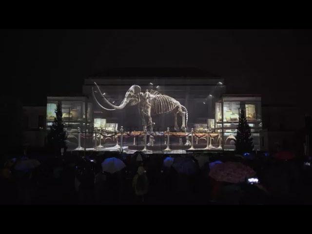 Maxin10sity团队密歇根大学打造3D投影秀