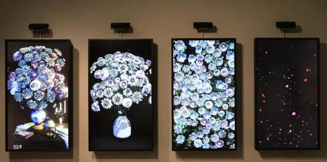 视觉盛宴:与墙面上绽放的鲜花互动吧!