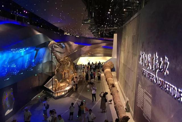 生命体验展馆案例:武汉自然博物馆肯尼斯・贝林大河生命馆