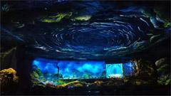 重庆四面山打造户外沉浸式光影体验乐园