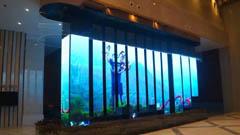 澄通创意LED屏点亮贵州茅台镇酒业展厅