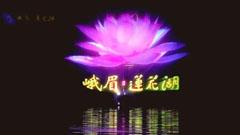 莲花湖5D全息水舞秀