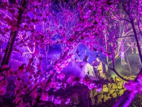 3D灯光秀公司解析户外3D灯光秀夜游灯光策划对景区的好处